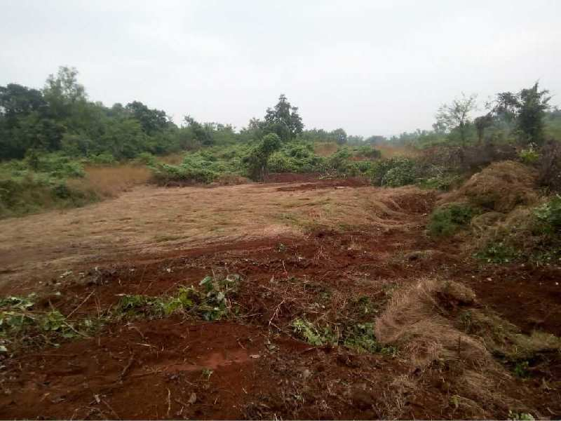 Dam Project at Pachal RAJAPUR