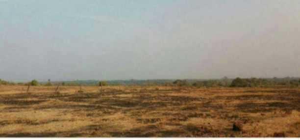 SOLGAO BARSU MIDC LAND SALE IN RAJAPUR RATNAGIRI