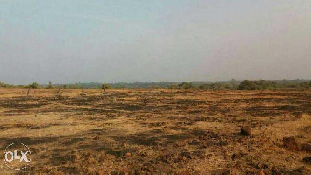 SOLGAO BARSU MIDC STAMPS LAND IN RAJAPUR RATNAGIRI
