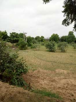 1 BHK Farm House for Sale in Pushkar, Ajmer