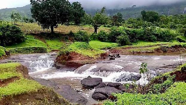 Trembakeshar highway at nashik Trembakeshar Ghoti road pahine at Kojoli Shiver farmahaus na Plots