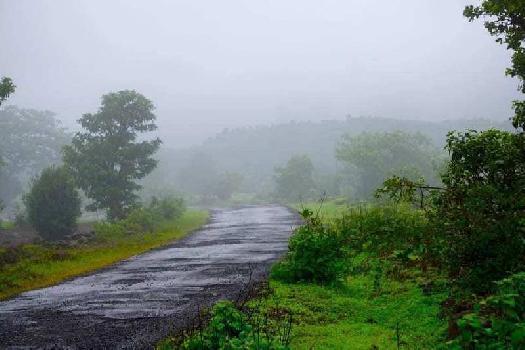 Nashik trimbak Ghoti Road Panine at Kojoli shiver near green county township