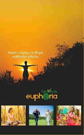 GROWORTH EUPHORIA