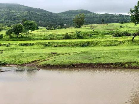 NA Plots nashik trimbak Ghoti Road Panine at Kojuli