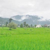 Agricultural/Farm Land for Sale in Kolkata South, Kolkata