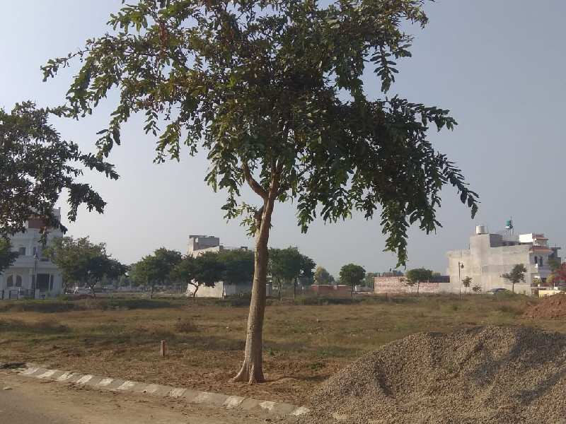 300 sq,yrd plot for sale
