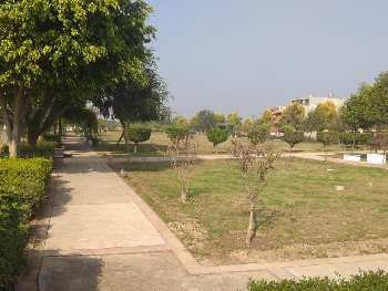 115 sq.yrd commercial plot for sale