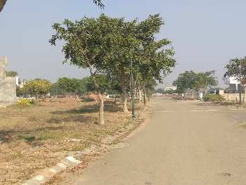 520 sq.yrd plot for sale