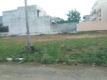 250 sq.yrd plot for sale