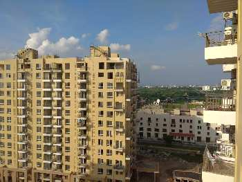 3 BHK Flats & Apartments for Sale in Sector 105, Mohali
