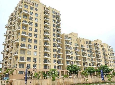 Ready to move 4bhk for sale in sector 105 Mohali