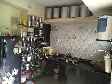 1 BHK Flats & Apartments for Sale in Tokarkhada, Silvassa
