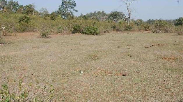 Commercial Lands /Inst. Land for Sale in ferozpur road, Ludhiana