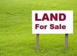 60 Acre Agricultural/Farm Land for Sale in Rahon, Nawanshahr