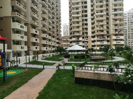 3 BHK Flats & Apartments For Sale In Sector 143, Noida
