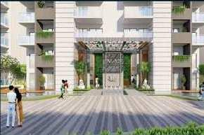 TULIP YELLOW 3 BED ROOM APARTMENT FLAT