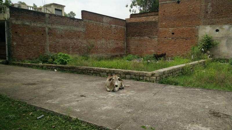 Residential Plot for Sale in Satna, M.P