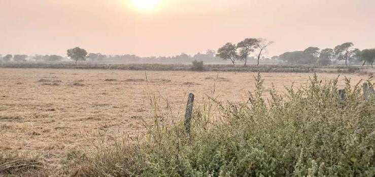 Agricultur land for sale at Jabalpur