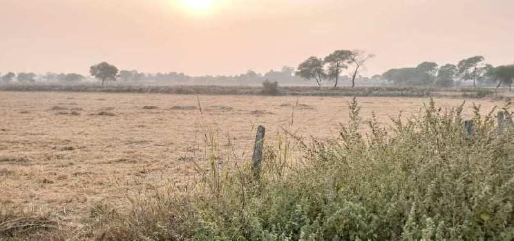 Agricultural Land For Sale near by JABALPUR CITY