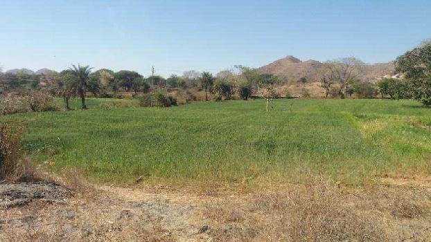 Agricultural/Farm Land for Sale in Udaipur