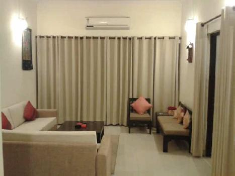 1 BHK Flats & Apartments for Rent in Koramangala, Bangalore South