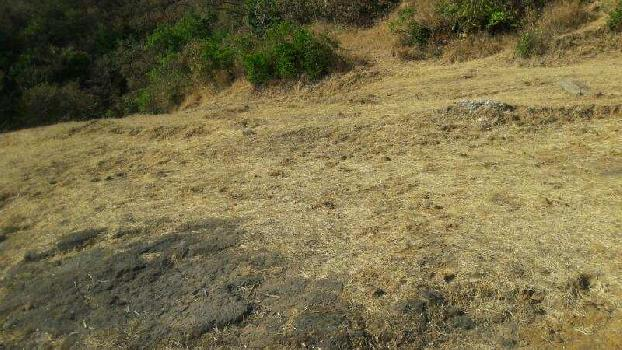 Farm Land for Sale in Lonavala, Pune