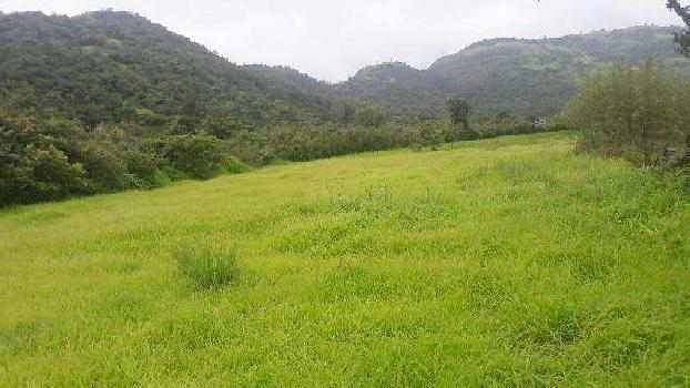 Agricultural/Farm Land for Sale in Lonavala, Pune