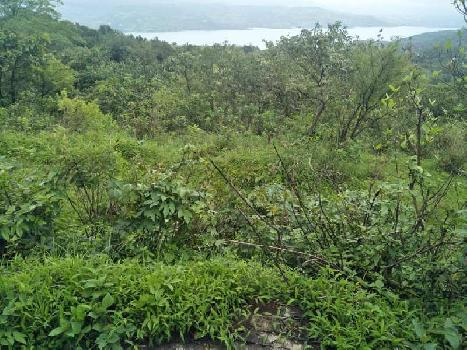 8 Acres land at Tungi village Pawana lonavala