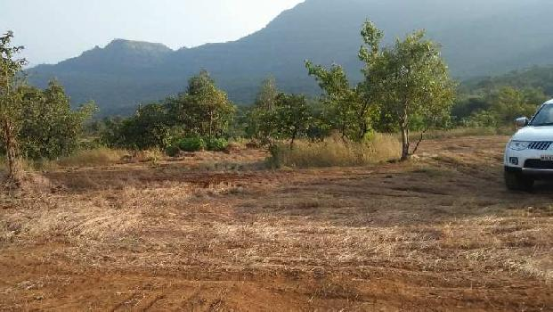 12 acre agricultural land for sale at Morva Pawana Lonavala