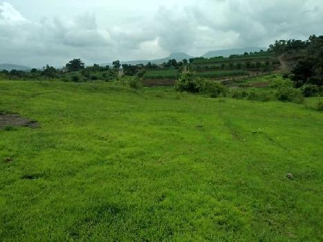 20 Acre Agricultural/Farm Land for Sale in Lonavala, Pune