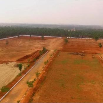 Residential Plot for Sale in Savaravilli, Visakhapatnam