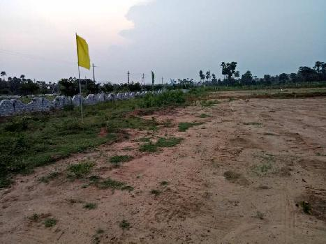 Residential Plot For Sale In Dakamarri,Visakhapatnam