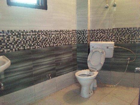 1 BHK Builder Floor for Rent in Saket, Delhi
