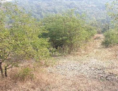 Plot for Sale in Lohegoan