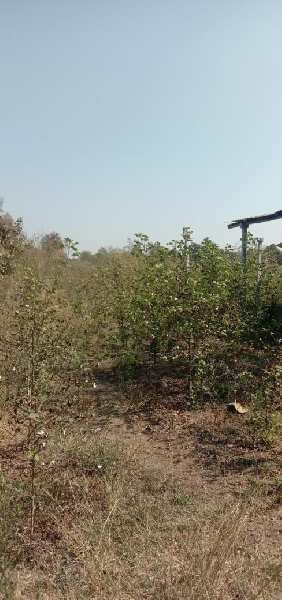 Land for sale in ridhora talaw
