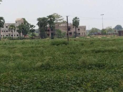 Residential Land for Sale in Bodhgaya,