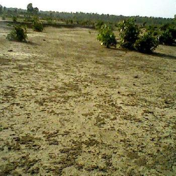 500 Square Yard Plot for Sale in Palwal