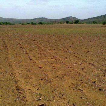 Residential Plot for Sale in Main Road, Faridabad