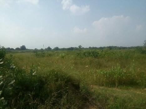 Industrial Land for Sale in Karjan, Vadodara