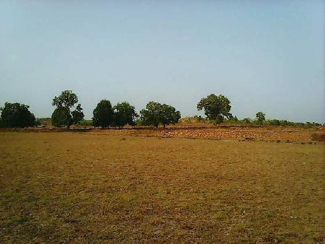 Agricultural Land For Sale In Kayovarahn To Chatral Road Touch, Vadodara