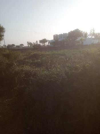 3 ACRE AGRICULTURE LAND FOR SALE IN BHARUCH.