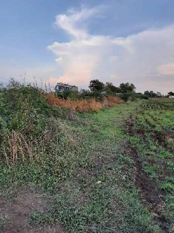 12 Acer Juni Sarat Land for Sale at Amod Village, Bharuch.