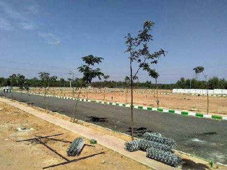 6,000 sq ft Residential Plot Sale in Borkhera, Kota