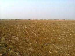 Residential Plot For Sale in Talwandi, Kota