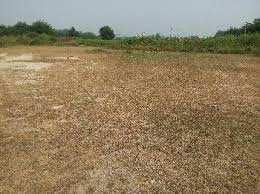 Residential Plot For Sale In Prime Location At Bundi Road, New Kamla Udhyan, Kota.