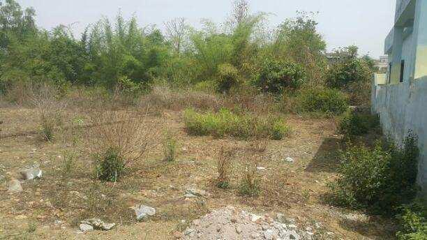 Residential Plot For Sale In Dhansa Road Najafgarh