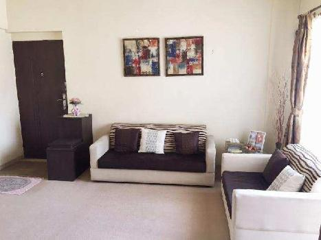 1 BHK Apartment for Rent at Pune
