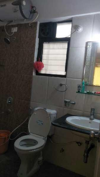 ivy Apartment