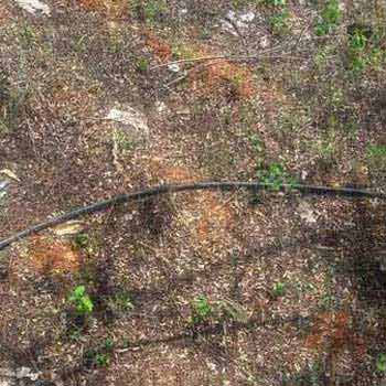Agriculture Land For Sale In TIRUNELVELI
