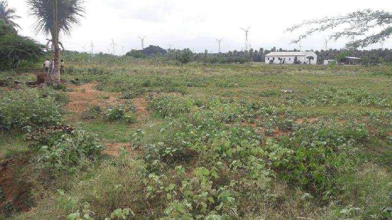 Agricultural/Farm Land for Sale in Tenkasi, Tirunelveli